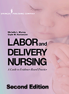 Labor and Delivery Nursing: A Guide to Evidence-Based Practice