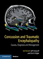 Concussion and Traumatic Encephalopathy: Causes, Diagnosis, and Management